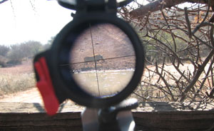 Hunter view through the crosshairs