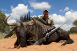 Successful wildebeest hunter.