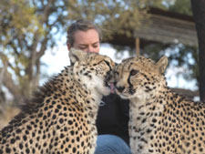 Interact with the Cheetah